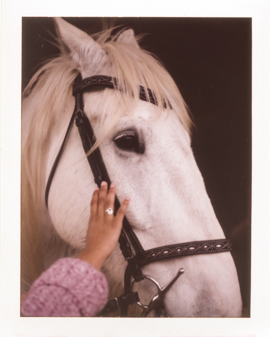 Girl touching horse  | Photographers who shoot film