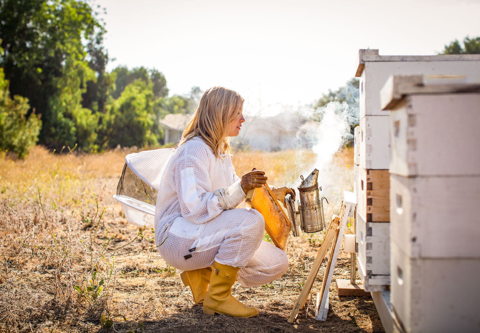 Beekeeper field with hives | Bee Book Photoshoot