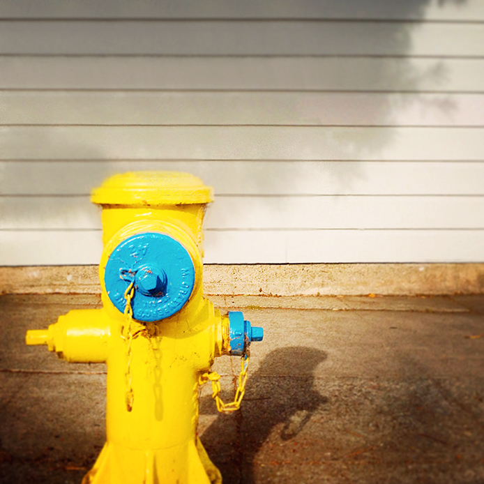 Bright yellow fire hydrant | Visual Storytelling Photographer