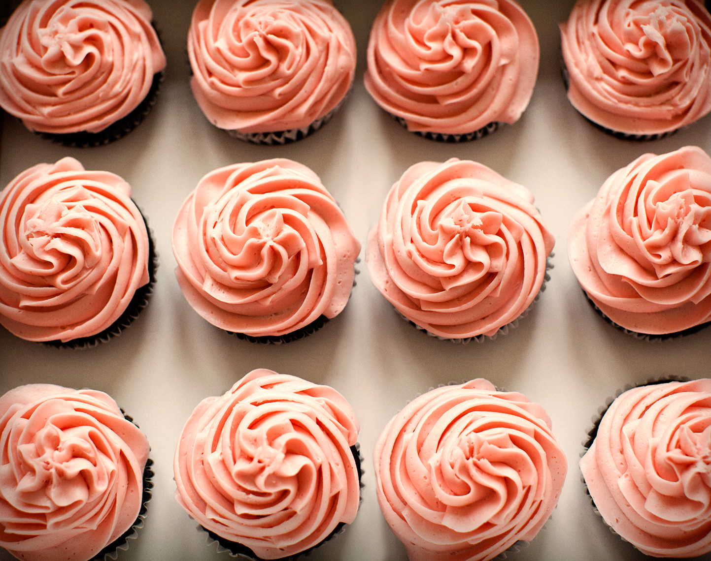STILL LIFE OF PINK CUPCAKES | TOSCA RADIGONDA PHOTOGRAPHY